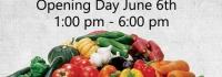 Innisfil Farmers Market Opening Day 2019, June 6 2019, IACHC, Dunk Tank, Fund raiser,