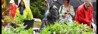 Innisfil Garden Club, Plant Sale, BBQ, Bake Sale